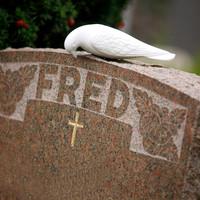 kirkegård25