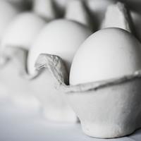 Æg, bakke med æg