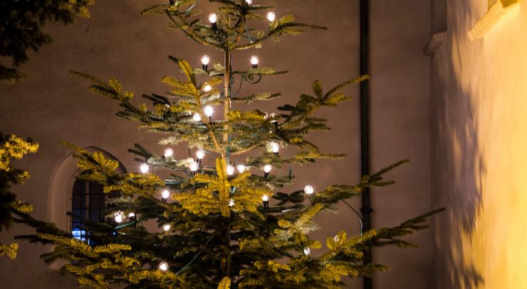 Foto af juletræ