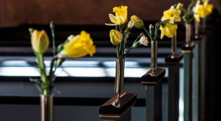 påskeliljer i små vaser ved kirkebænke